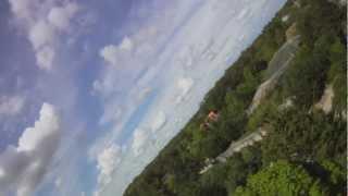 Première mondiale! Cigogne blanche en vol équipée d'une caméra au PAL! Trailer