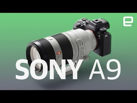 Sony A9 | First Look