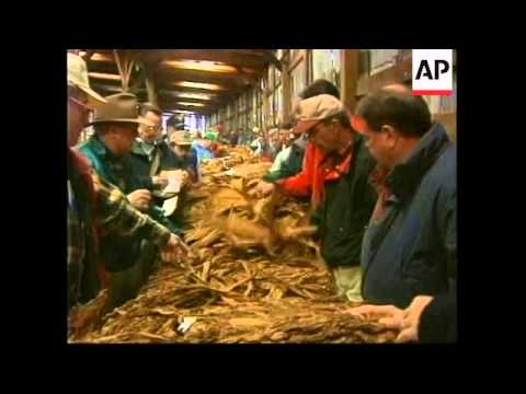 USA: KENTUCKY: PRESIDENT CLINTON MEETS TOBACCO GROWERS