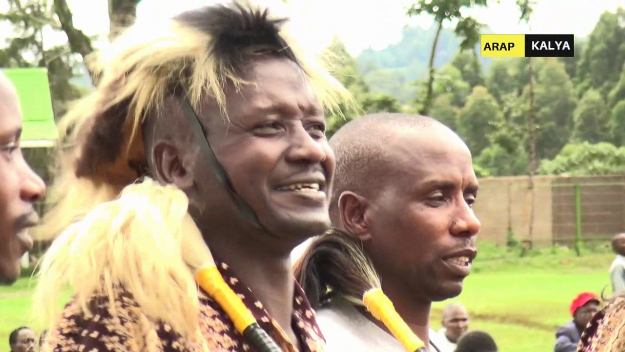 Image result for KIPSIGIS