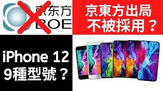 iPhone 12 總共有幾款?最新消息流出! / 京東方出局?供貨蘋果失敗!/ 9月準時買 iPhone 12!