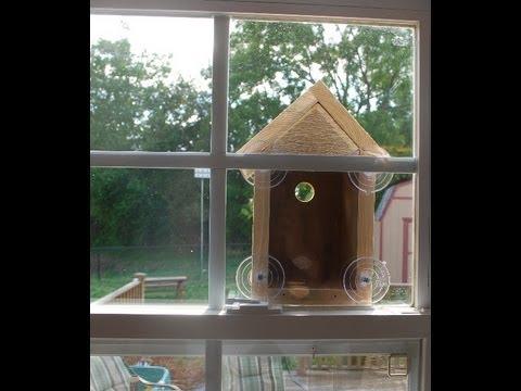 How To Make A Window Bird House Nest Box Woodlogger Com