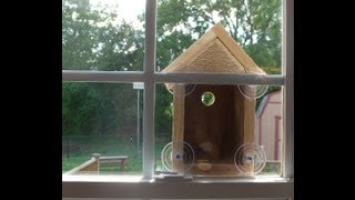 Making a Window Bird House - Nest box (woodlogger.com)