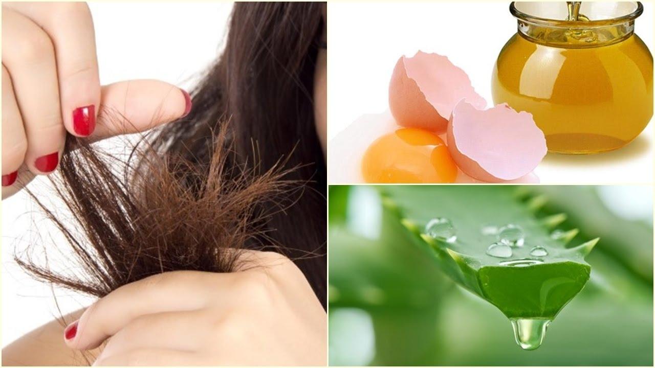 remedios caseros para el cabello reseco con sabila