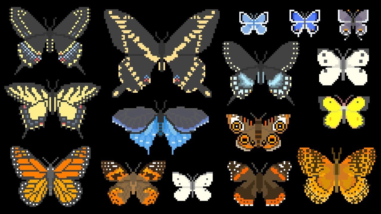 north-american-butterflies-insects-the-kids-picture-show-fun-educational-learning-video