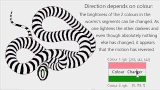 The Worms Eye View Illusion