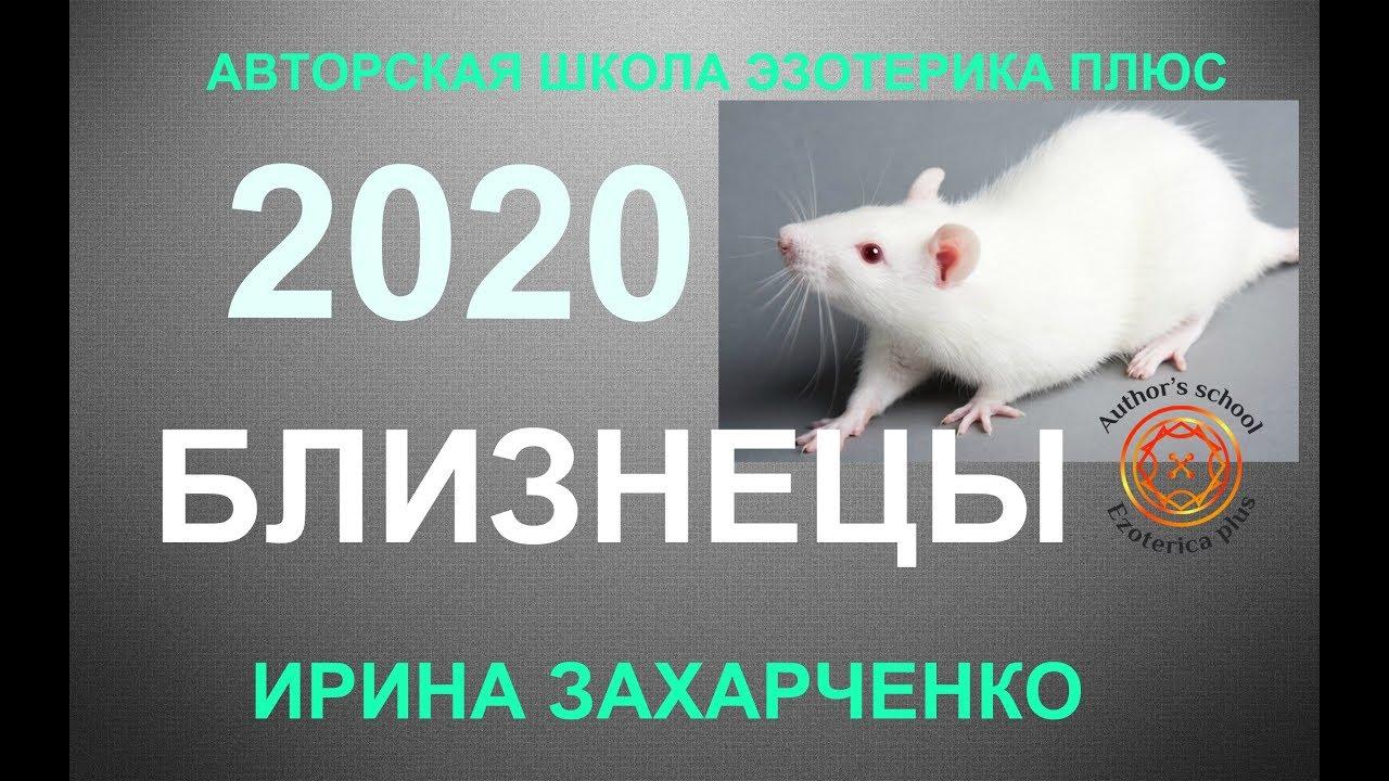 ♊БЛИЗНЕЦЫ. Гороскоп на 2020 год. Прогноз на 12 домов гороскопа.
