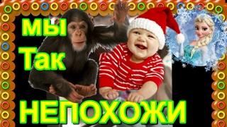 """Смешные ролики,приколы """" Дети и животные """" -Funny videos.Funny videos,jokes """" Children and animals """""""