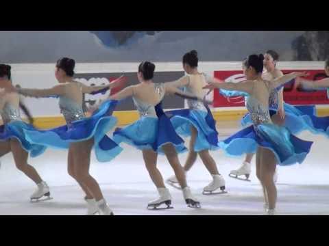 2014 世界シンクロスケーティング イタリア大会 フリー JAPANチーム