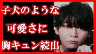 KAT-TUNの亀梨和也主演ドラマ『ボク、運命の人です。』 第2話が4月22日...