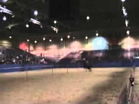 Western Experience Barrel Race En Pole Bending Billy Jean Van Dijk