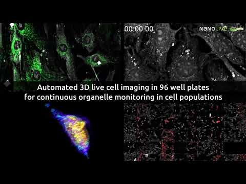 CX-A il microscopio olotomografico automatico per Live cell imaging long term