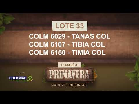 LOTE 33   COLM 6029,6107,6150