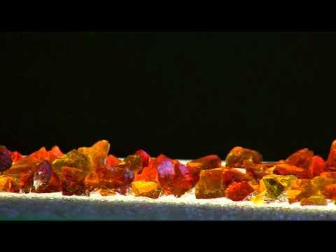 do fireplace ashes make good fertilizer expensive - Rade Gutt 99