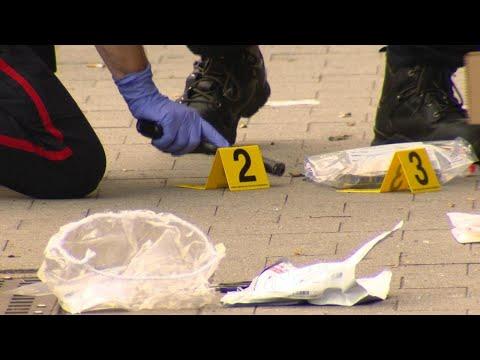 Toronto Police Wrap Up Anti-guns And Gangs Initiative