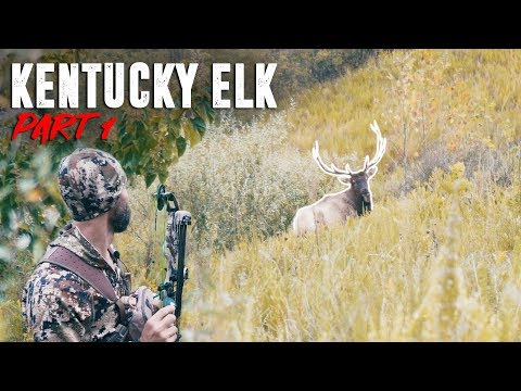 BOWHUNTING KENTUCKY BULL ELK - Part 1