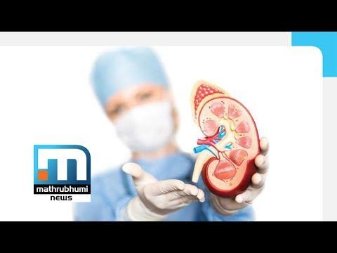 Kidney Diseases: Doctor @2PM | Mathrubhumi News