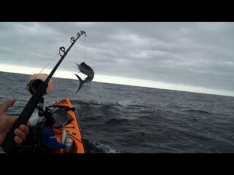 рыбалка на каяках в океане видео