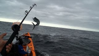 100kg Marlin & 100kg Shark from kayak extreme fishing