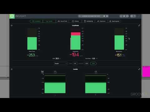 Interface & Layouts (iZotope Insight 2 Explained)