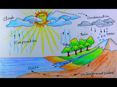 How to draw Water Cycle of a School Project.
