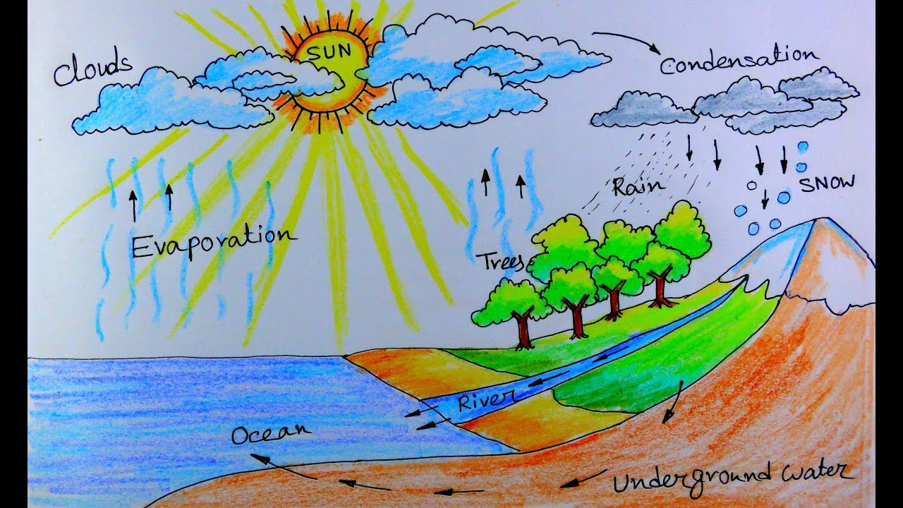 Schoolprojectdrawing oilpasteldrawing oilpastelscenery also how to draw water cycle of  school project youtube rh