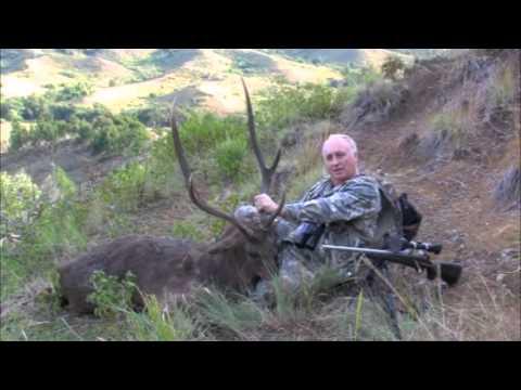 rusa deer trophies 2011