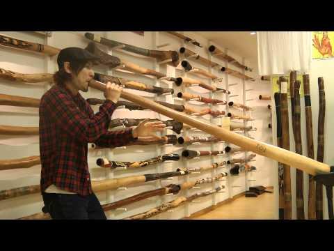 "Japanese Didgeridoo Beatboxer ""SMILY"" @ Spirit Gallery"