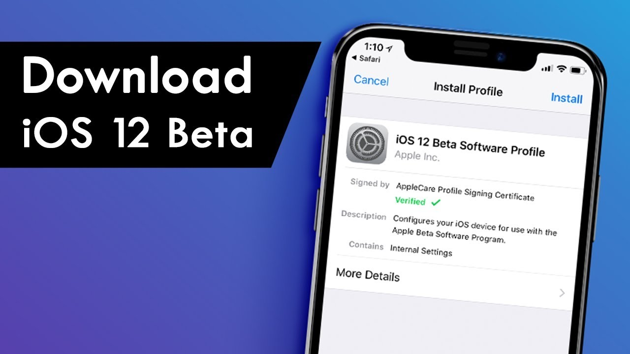 ios 12 beta profile