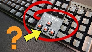Why people use these? Xanova Pulsar Mechanical keyboard review and unboxing.
