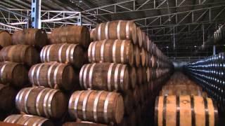 Tequila Process