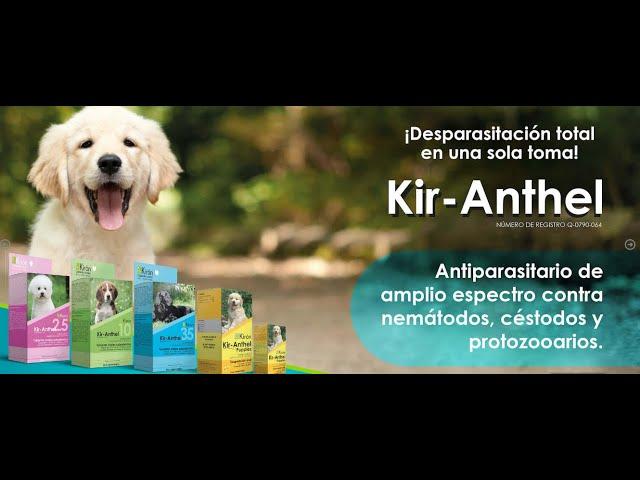 Kir-Anthel, Desparasitación total en una sola toma