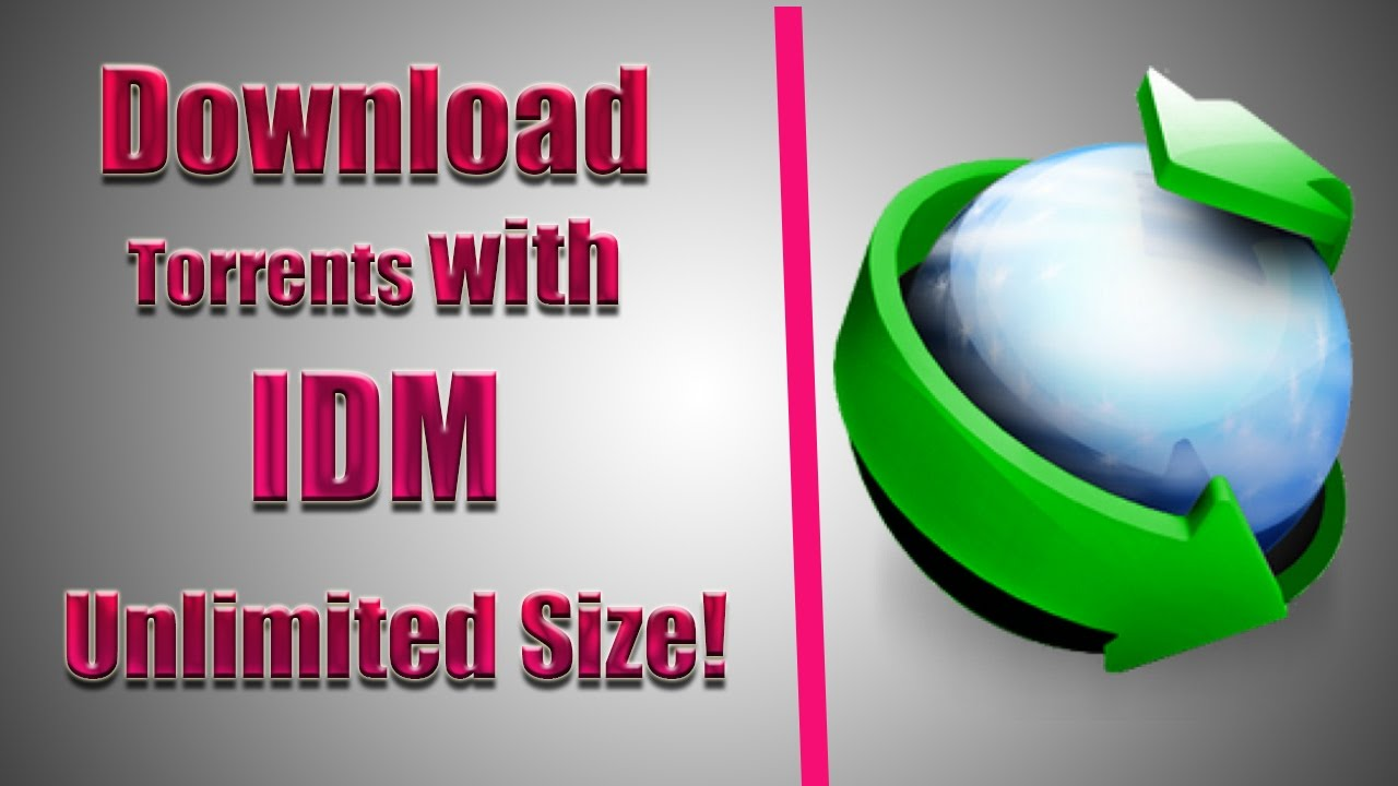 download torrent via idm free