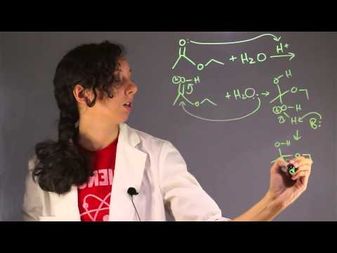 Explanation of Hydrolysis in Chemistry : Chemistry Help