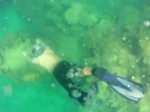 cerro gordo reef adventure