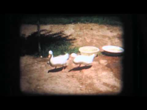 Old Home Movies