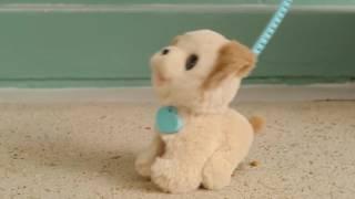 Интерактивный щенок Пакс FurReal Friends – Pax Hasbro