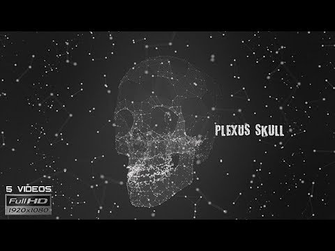 Plexus Skull Silhouette - 5 Pack - VideoHive