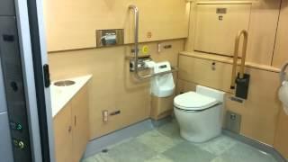 Narita Express Toilet