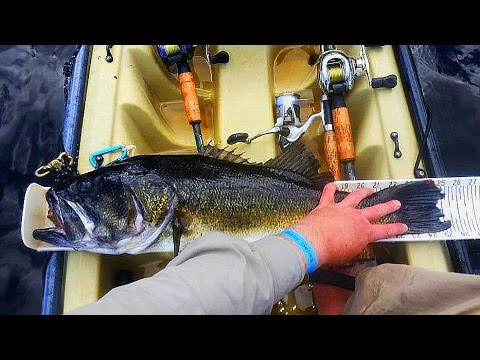 HUGE Bass in Kayak Bass Series Tournament