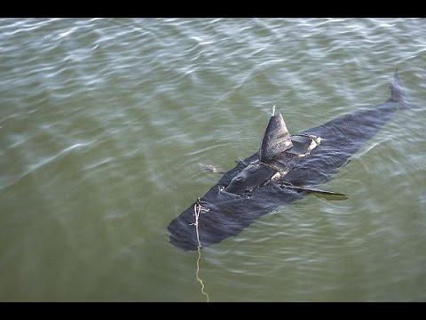 Silent NEMO - U.S. Navy's Underwater Drone