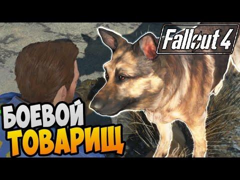 Fallout 4 Прохождение ►...
