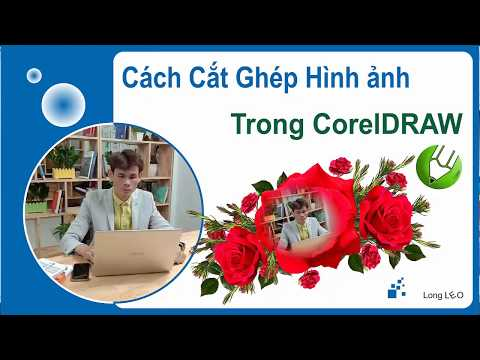 Cách cắt ghép hình ảnh trong CorelDraw