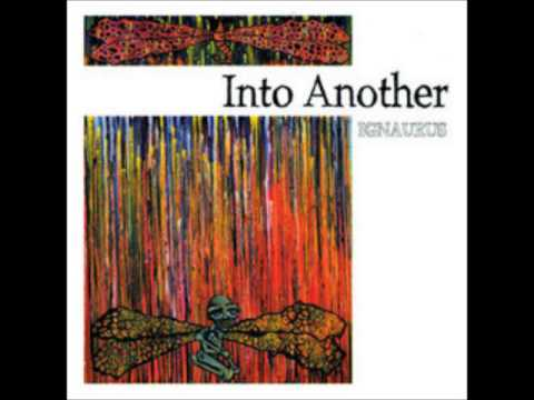 INTO ANOTHER Ignaurus [full album]