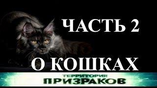 О кошках. Часть 2. Территория Призраков. Серия 22.