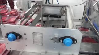 산소포장기MAP HA2…