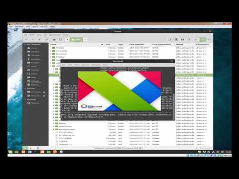 HOW TO INSTALL NETBEANS 11 ON LINUX