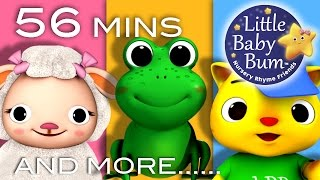 Animal Songs for Children | Plus Lots More Nursery Rhymes |56 Mins Compilation from LittleBabyBum!