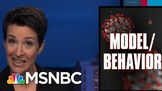 Failed Us Federal Response To Covid-19 Manifests As International Disaster | Rachel Maddow | Msnbc