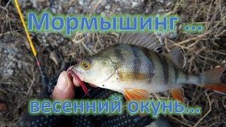Ультралайт, мормышинг, ловля окуня весной...рыбалка  20 марта...(Окунь на мормышку...Сегодня пошастали по БВХ...результат 10 окуньков...испытал новую сбрую для фотоаппарата..., 2016-03-21T01:11:55.000Z)